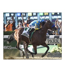 American Pharoah Belmont 8x10 Matted Photo