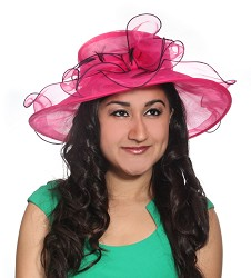 The Big Brim Organza Hat