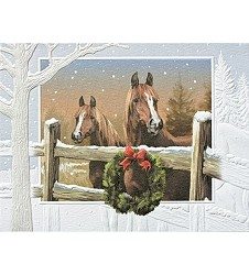 In The Meadow Holiday Card Set,91065BX