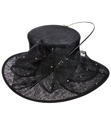 The Sparkle Quill Hat,KD74DERBY-BLACK