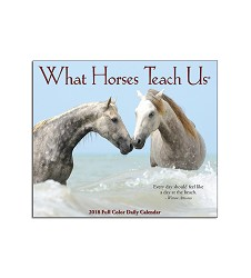 What Horses Teach Us Box Calendar 2018