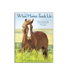 What Horses Teach Us Engagement Calendar 2018,47522