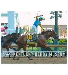 2015 American Pharoah Photo