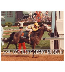 1982 Gato del Sol Finish Photo,#KD82-34
