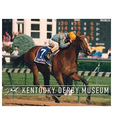 1990 Unbridled Stretch Photo,#KD90-25