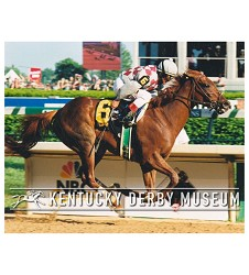 2003 Funny Cide Stretch Photo