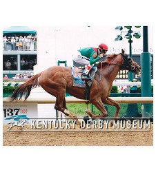 2011 Animal Kingdom Stretch Finish Photo