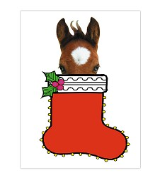 Foal in Stocking Christmas Card Set