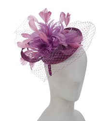 The Feather and Netting Fascinator