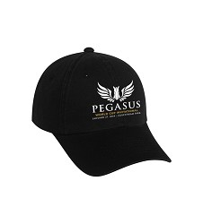 2018 Pegasus World Cup Invitational Logo Performance Cap