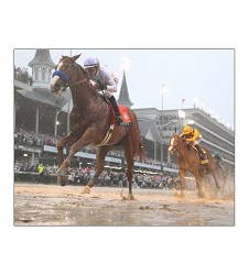 2018 Justify Remote Matted Photo