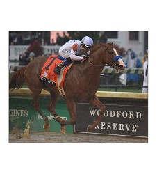 2018 Justify Finish Line Matted Photo