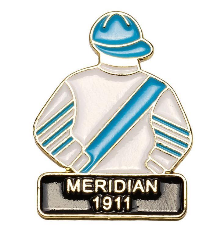 1911 Meridian Tac Pin,1911