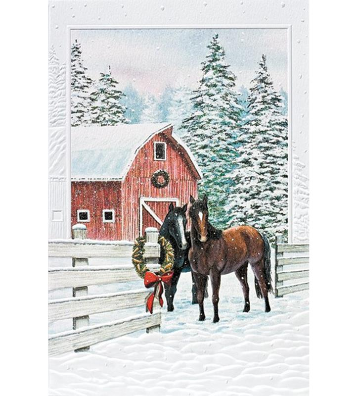 Curious Couple Holiday Card Set,98416BX
