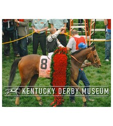 2009 Mine That Bird To the Winners Circle Photo,#PJG-0926