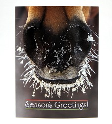 Frosty Nose Christmas Card Set
