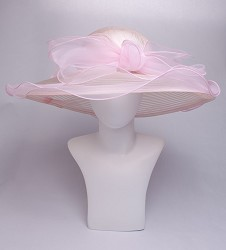 The Horsehair and Organza Trim Hat