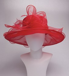 The Big Brim Bow Organza Hat