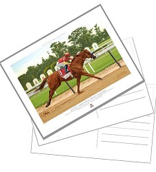 Justify Official Edition Postcard