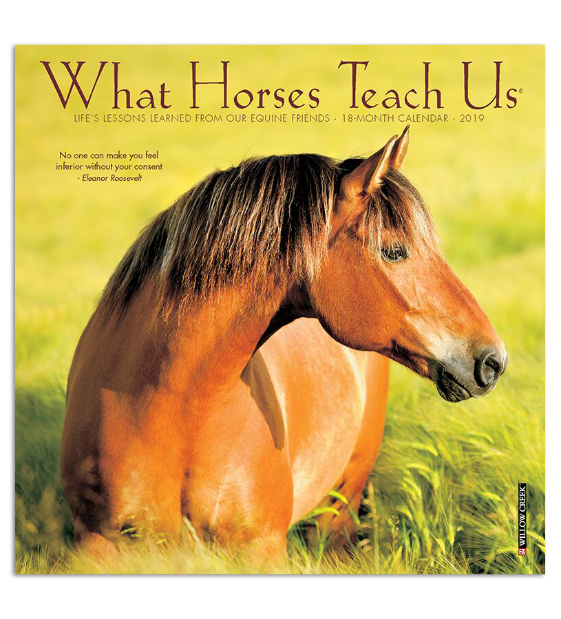 2019 What Horses Teach Us Mini Calendar,#03497 2019