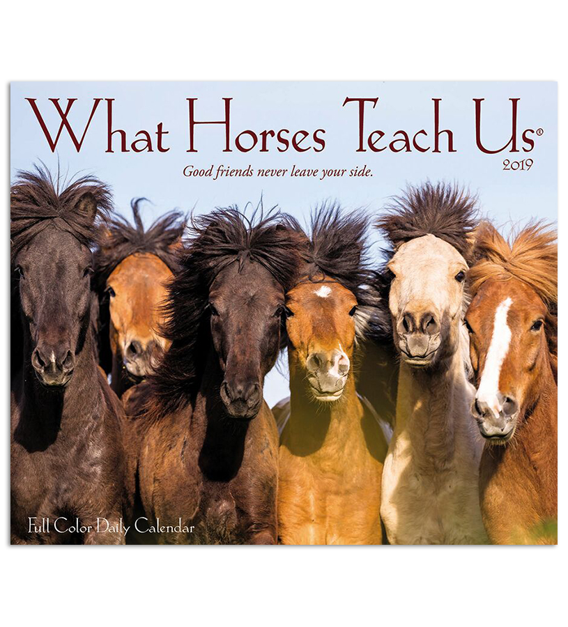 2019 What Horses Teach Us Daily Desk Calendar,#03374 2019