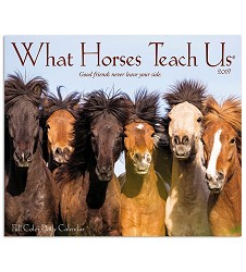 2019 What Horses Teach Us Daily Desk Calendar