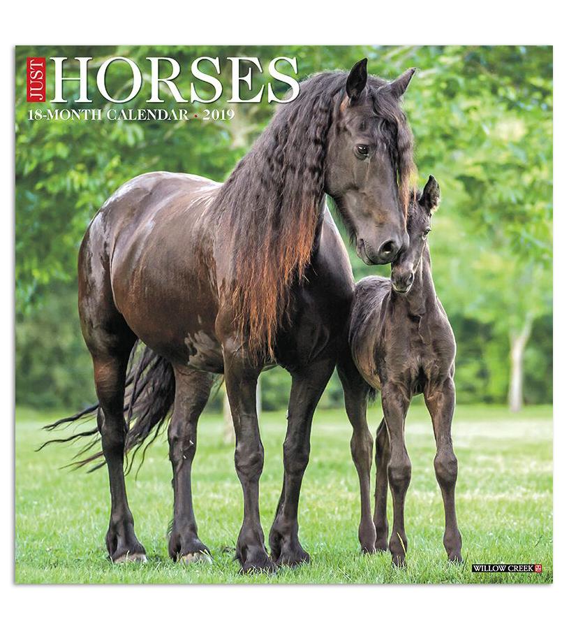 2019 Just Horses Calendar,#01479 2019