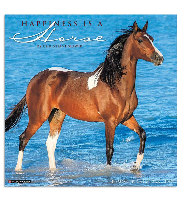 2019 Happiness is a Horse Calendar,#01370 2019