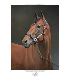 American Pharoah Dual Signed Limited Edition Print