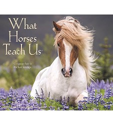 What Horses Teach Us 2017 Box Calendar 4.25x5.25""