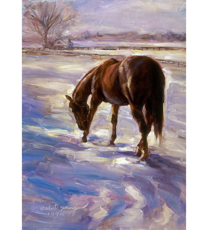 Horse in Snow Holiday Card Set,WINTER HUES 133